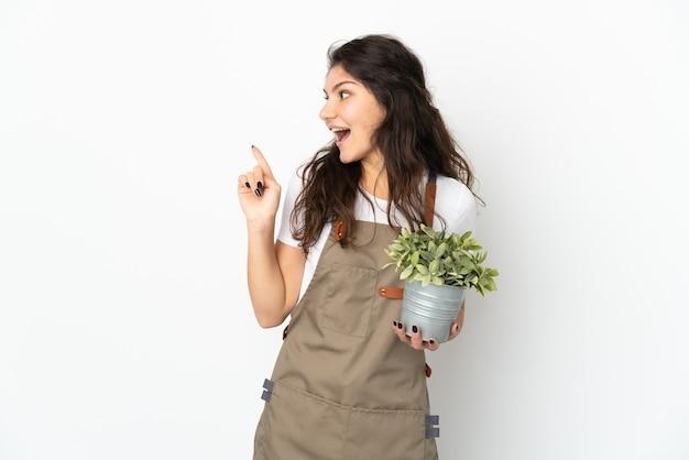 Chica joven jardinero ruso sosteniendo una planta aislada con la intención de darse cuenta de la solución mientras levanta un dedo