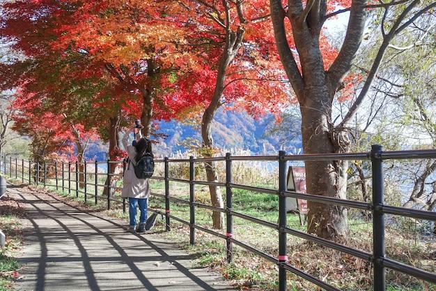 Chica joven toma foto en otoño hojas de arce rojo