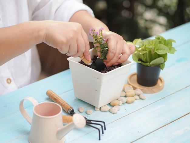Chica plantar arbolito de flores, pasatiempo el día de vacaciones