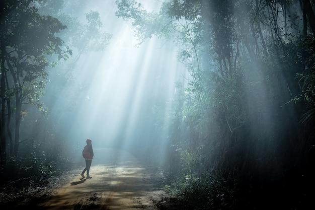 Chica en rayos de sol que entra a través de los árboles en el bosque