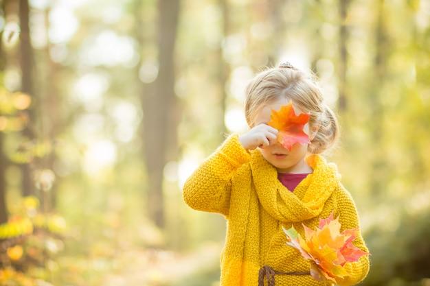 Chica rubia esconde su rostro detrás de una hoja de arce. bosque soleado de otoño concepto de otoño, temporada, infancia y personas. niño lindo, niño con hojas de otoño.