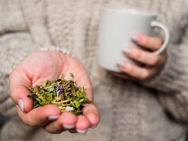 Chica en suéter tomando té con hierbas