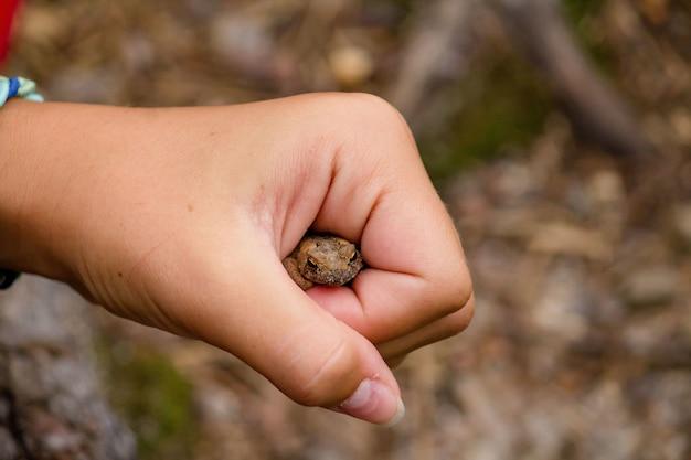 Chica sujetando un sapo en su puño