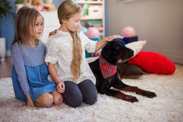 Chicas y perro sentados en una fila.