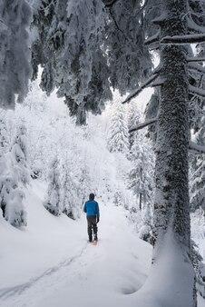 Un chico camina en un bosque de montaña en invierno entre árboles cubiertos de escarcha después de una nevada
