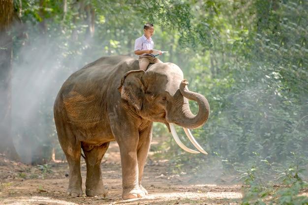 Chico estudiante de escuela primaria en el campo de tailandia acostado leyendo un libro en la parte posterior de un elefante, surin, tailandia.