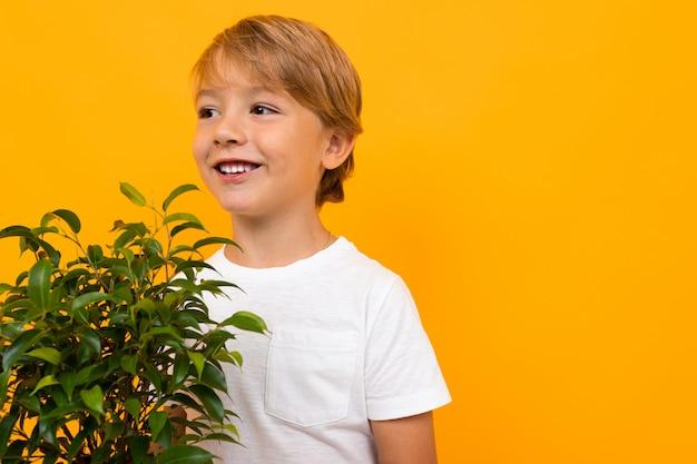 Chico europeo rubio con frondosas plantas en maceta en la pared amarilla