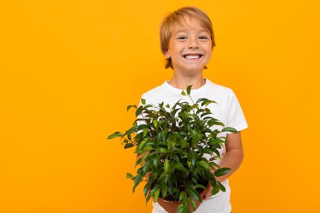 Chico europeo rubio con frondosas plantas en maceta en pared naranja