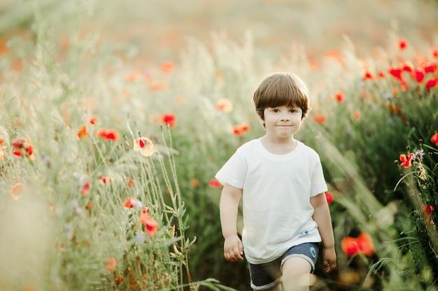 Chico lindo está caminando entre el campo de amapolas