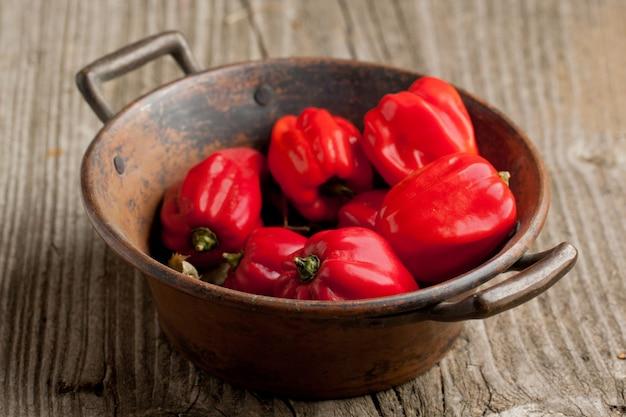 Chiles habaneros de chile rojo