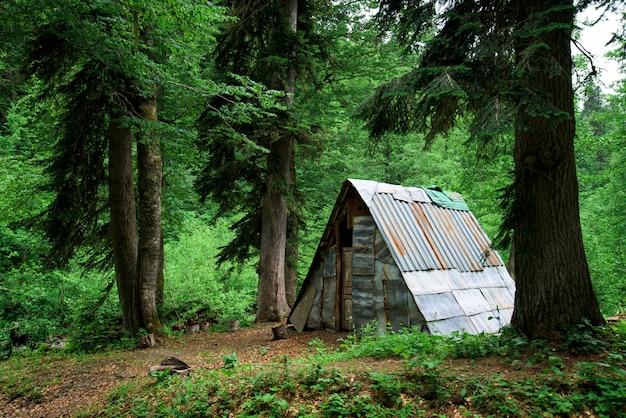 Choza en el bosque en las montañas