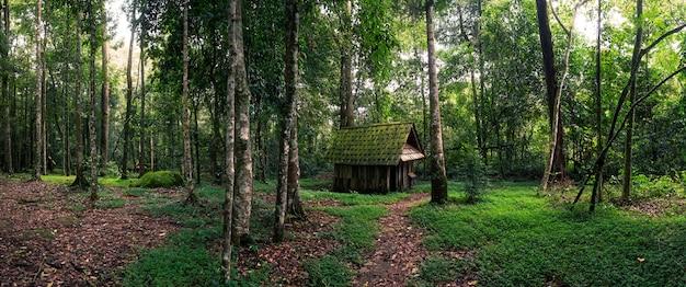 Choza verde en bosque