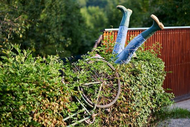 Ciclista borracho chocó contra arbustos