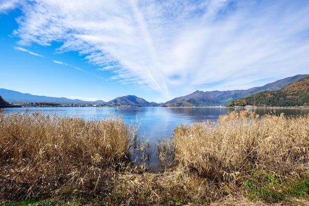 Cielo azul y la hierba en el lago kawaguchiko, japón