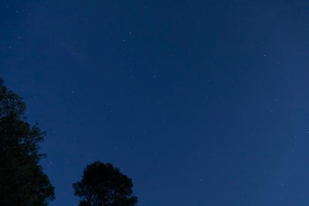 Cielo nocturno de ángulo bajo