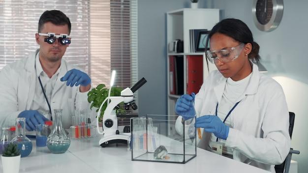 Científica investigadora haciendo experimento con hámster en un moderno laboratorio de química