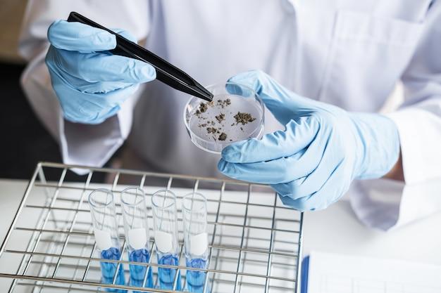 Científico en bata de laboratorio trabajando en laboratorio biotecnológico
