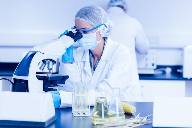 Científico de alimentos utilizando el microscopio