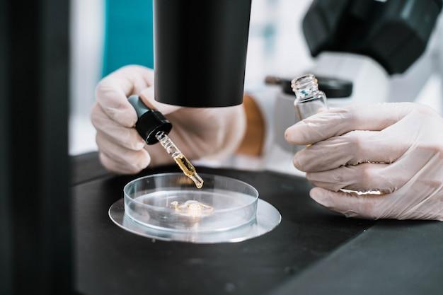 Científico gota de líquido amarillo en placa al microscopio