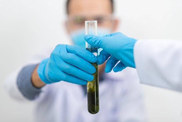 El científico, médico, hace medicina de hierbas alternativa con hierbas.