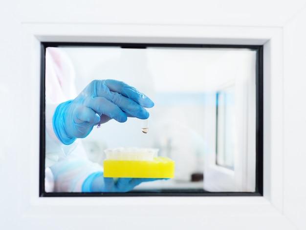 Un científico o empleado de un laboratorio científico químico y bacteriológico entrega una muestra de sangre a una ventana especial de laboratorio de pcr de adn. virología, epidemia, coronavirus.