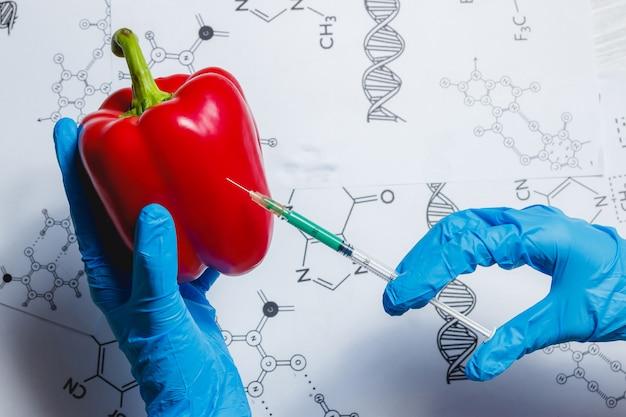 Científico de omg inyecta líquido verde de jeringa en pimiento rojo