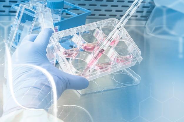 Científico probando remix digital de investigación médica química