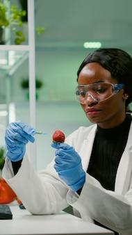 Científico químico inyectando fresa con líquido orgánico examinando la prueba de adn de frutas