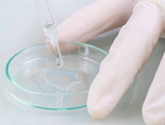 Científico técnico que analiza una muestra de sangre en una bandeja en el laboratorio para probarla en covid, covid-19, análisis del virus del coronavirus