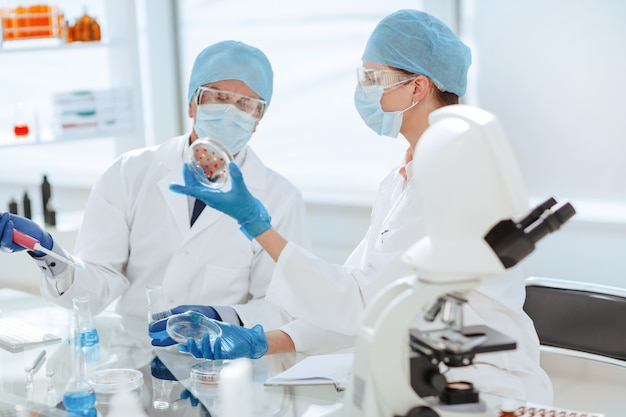 Científicos discutiendo su investigación en el laboratorio.