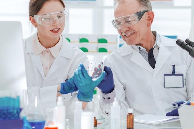 Científicos que discuten el desarrollo de bacterias en una placa de petri