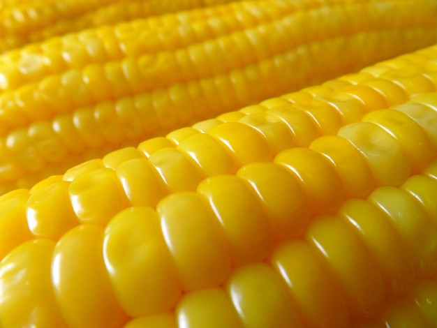 Cierre para arriba de los callos dulces hervidos amarillos vibrantes, fondo de la textura