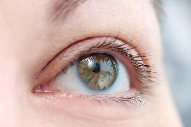 Cierre del ojo humano. ojo femenino