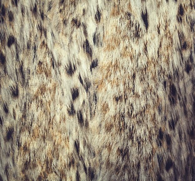Cierre de patrón de punto de leopardo