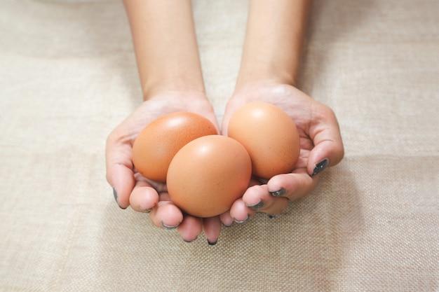 Ciérrese para arriba de las manos de la mujer joven, sosteniendo los huevos en las manos en el saco