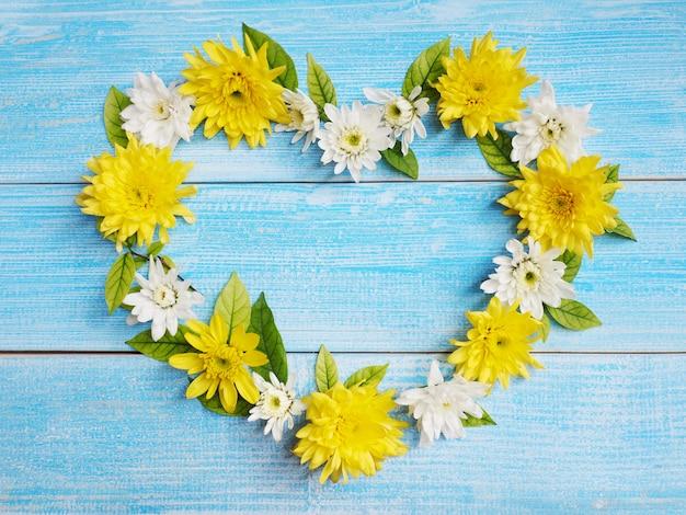 Ciérrese encima de las flores blancas y amarillas del crisantemo en forma del corazón en la madera azul.