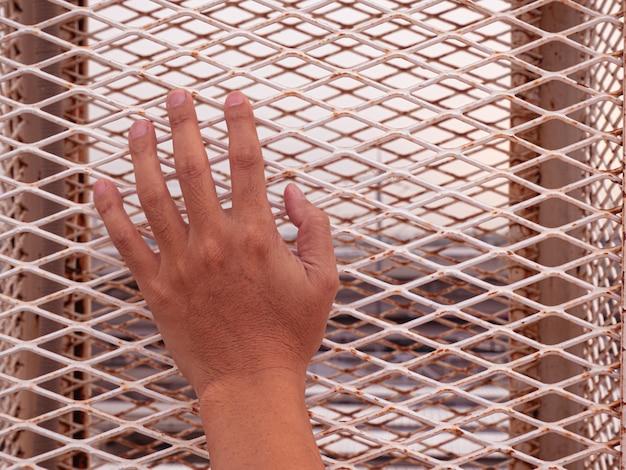 Ciérrese encima de la mano del hombre que sostiene la jaula.