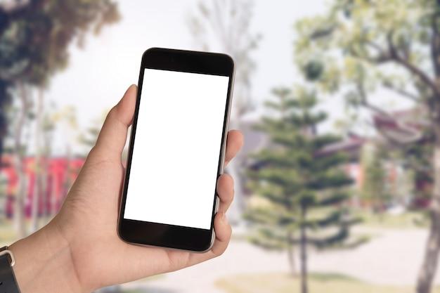 Ciérrese encima de la mano de la mujer usando un teléfono elegante con la pantalla en blanco en el parque de hinoki.
