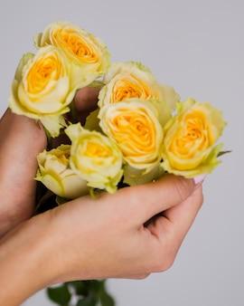 Ciérrese encima de las manos que sostienen rosas amarillas