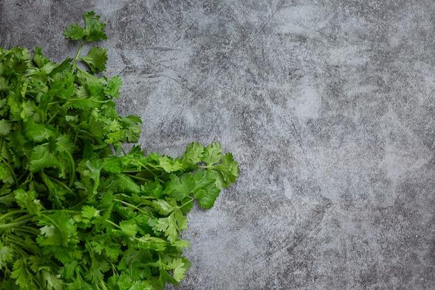 Cilantro verde fresco sobre piso oscuro