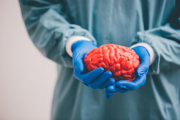 Cirujano sosteniendo un cerebro