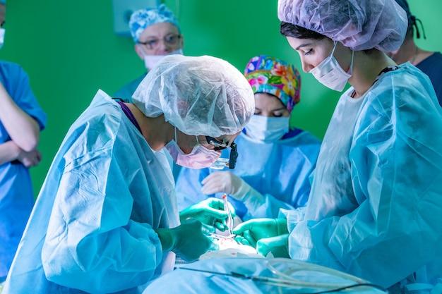 Cirujano y su asistente realizando cirugía estética en la nariz en la sala de operaciones del hospital. remodelación de la nariz, aumento. rinoplastia