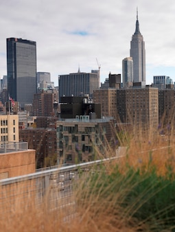 City skyline, manhattan, nueva york, estados unidos