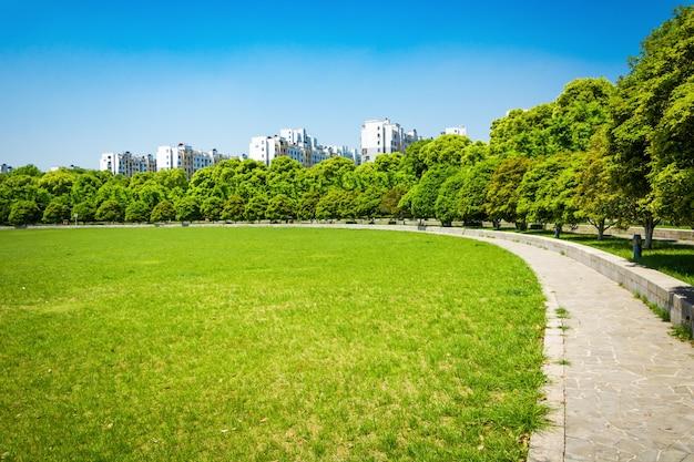 Ciudad y la hierba con cielo azul