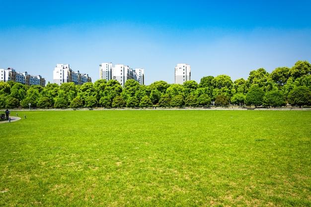 Ciudad y hierba con cielo azul