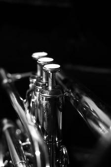 Clásico cornet musical de blanco y negro.