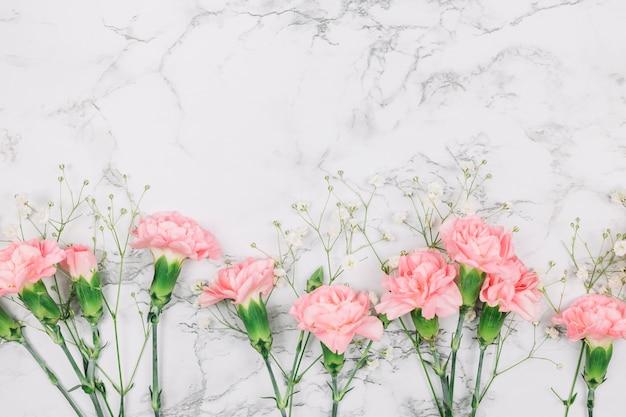Claveles rosados y flores de gypsophila sobre fondo con textura de mármol