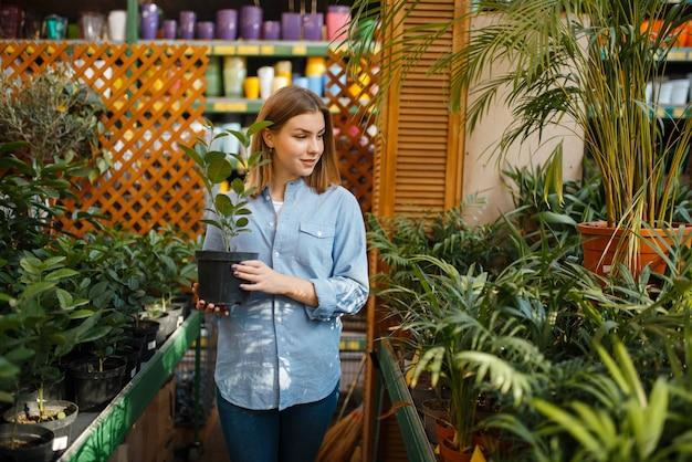Clienta con flor en una maceta, tienda de floristería. mujer comprando equipos en la tienda para floricultura, compra de instrumentos de floristería