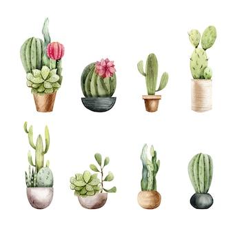Clipart de cactus acuarela