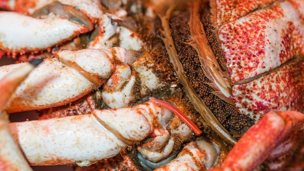 Close-up de cangrejo fresco en el mercado